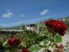Jardín del complejo